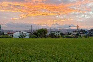 木村社長のブログ